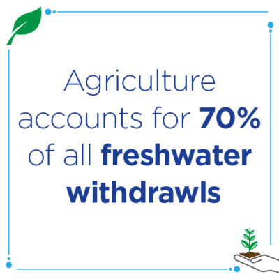 agriculture water usage